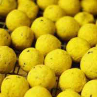 Pinapple bright yellow test baits drying out.