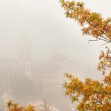 Fog in Camerino. Basilica San Venanzio.