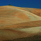 Plough-land in Andalucia