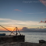 Red Crane Sunrise