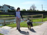 Walking Beau at Fourteen Locks.