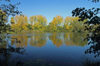 Lake Autumn 01