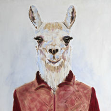 Do You Recognise This Llama?