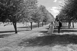 Martin & Elaine wedding August 2013