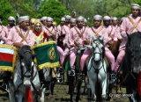 Oman Cavalry