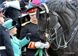 The Queen Meets The Cavalry