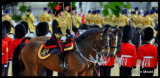 Trooping The Colour R.H.A