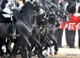 Trooping The Colour H.C