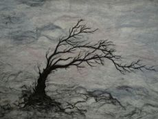 Windswept Tree 83cms x 58cms £330