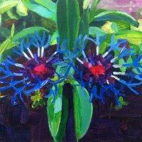 Corn Flower 46.85 x 35cm, Giclee Print £90