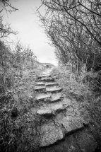Path from Port Mulgrave 3
