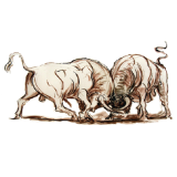 Los Toros Luchan