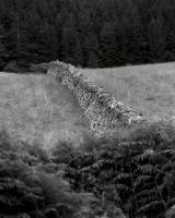 29 Dyke, Loch Broom.