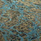 River Delta 2