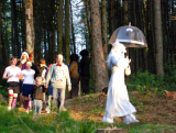 A group being led along the woodland walk at dusk.